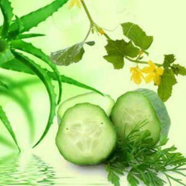 Aloe Vera & Cucumber Fragrance Oil