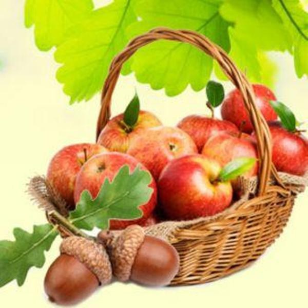 Apples and Oak Fragrance Oil8_600x600